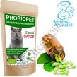 Probiopet Gatos (probióticos para mascotas)